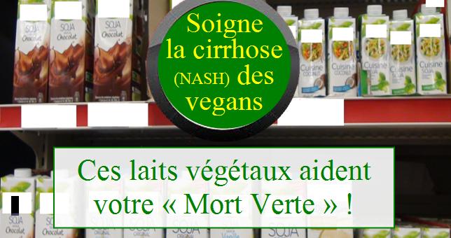 La production des huiles végétales – son impact sur les laits végétaux